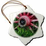 paint your wagon red - 3dRose Danita Delimont - Western - USA, Alaska, Chena Hot Springs. Vintage wagon wheel and grass. - 3 inch Snowflake Porcelain Ornament (orn_278348_1)
