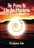 He Puna Iti i te Ao Marama: A Little Spring in the World of Light