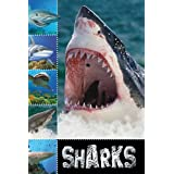 Sharks (Ready To Read) by Sarah Creese (2011-01-30)