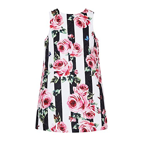 Doris Batchelor Elegant Baby Girls Dress Flower Dresses Princess Costume forChildren Summer Dresses for Girls 91 11 ()