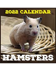 Hamsters Calendar 2022: Daily, Weekly and Monthly Planner | Hamsters 2021-2022 Planner | Hamsters Calendar and Organizer | small calendar