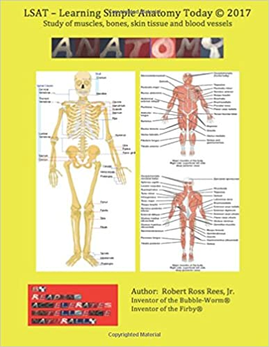 Amazon Lsat Learning Simple Anatomy Today Study Of Muscle