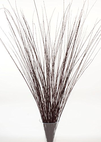 Green Floral Crafts 4-5 ft Tall Dark Burgundy Brown Asian Willow, Bunch of 90-100 Tall Sticks &Wispy Grass (Vase Not Included) ()