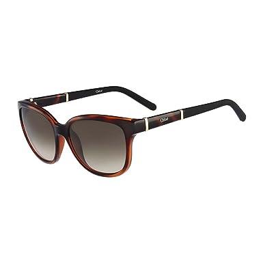 Amazon.com: Chloe anteojos de sol ce664s 219 tortuga 54 MM ...