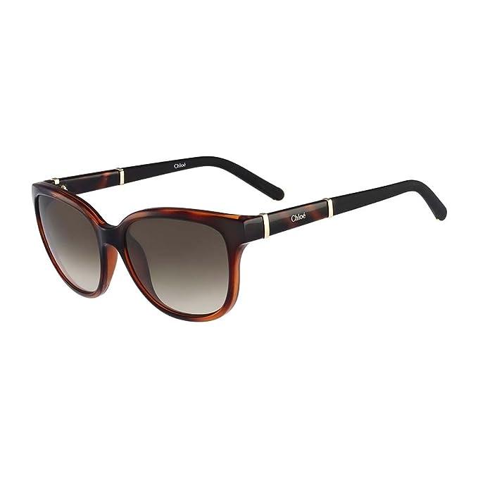 e633e893a7e Chloe Sunglasses CE664S 219 Tortoise 54MM  Amazon.ca  Clothing   Accessories
