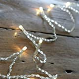 Battery Operated Fairy Lights with 20 Warm White LEDs