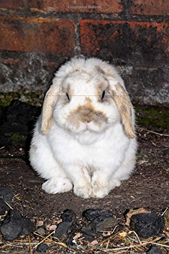 Mini Lop Rabbit Journal: 150 page lined (Mini Lop Rabbit)