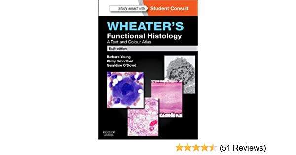 Amazon wheaters functional histology e book a text and colour amazon wheaters functional histology e book a text and colour atlas functional histology wheaters ebook barbara young phillip woodford fandeluxe Gallery