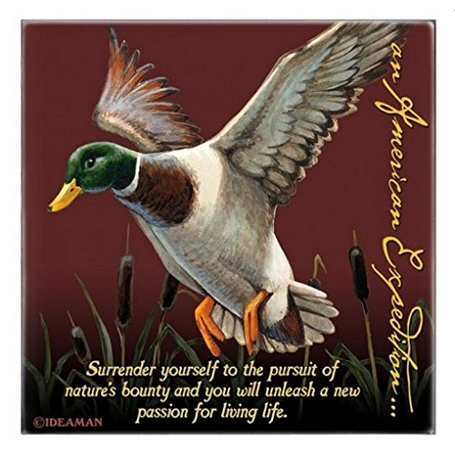 (Mallard Duck Square Absorbent Stone Coaster)