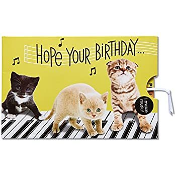 Amazon musical birthday card interactive sound birthday american greetings funny kitten birthday card with music 5801302 bookmarktalkfo Images