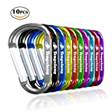 3'' 10 Pack Aluminum Carabiner Clips, Vibrant Colors D Shape Durable -loaded Gate Aluminum Carabiners Clips Hook for Home, Rv, Camping, Fishing, Hiking, Traveling and Keychain