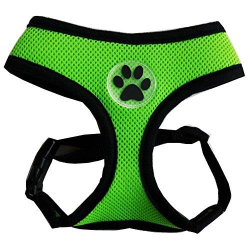 BINGPET BB5001 Soft Mesh Dog Harness Pet Walking Vest Puppy Padded Harnesses Adjustable, Green Small