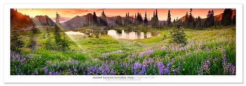 (Award Winning Landscape Panoramic Art Print Poster: Mount Rainier National Park At)
