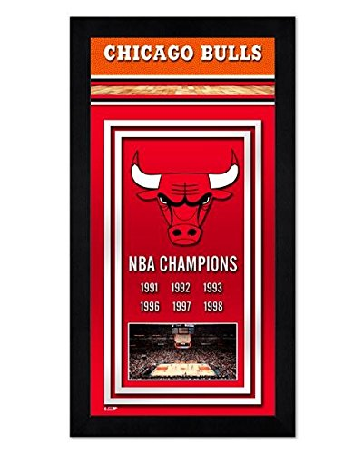 Chicago Bulls 7x13 Mini Frame Photo Championship Banner - Licensed NBA Memorabilia (Nba Championship Banner)