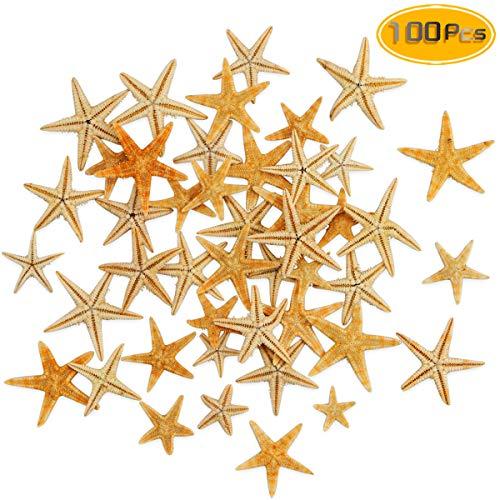 Yexpress 100 Pcs Small Starfish Sea Shell Beach Crafts Decor(0.4