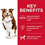 Hill's Science Diet Dry Dog Food, Adult 7+ for