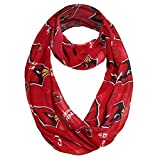 Littlearth NFL Arizona Cardinals Sheer Infinity Scarf, One Size, Red