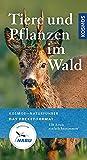 Tiere und Pflanzen im Wald: 120 Arten einfach bestimmen (Kosmos-Naturführer Basics)