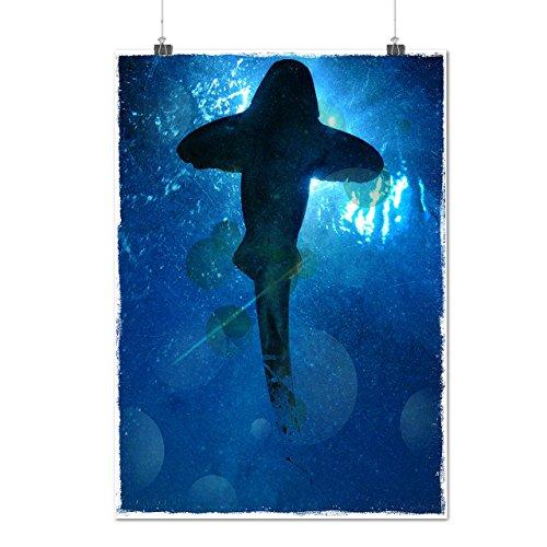 Ocean Predator Fish Sea Monster Matte/Glossy Poster A2 (17x24 inches) | Wellcoda