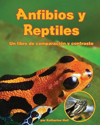 Anfibios y Reptiles: un libro de comparación y contraste [Amphibians and Reptiles: A Compare and Contrast Book] (Spanish Edition)