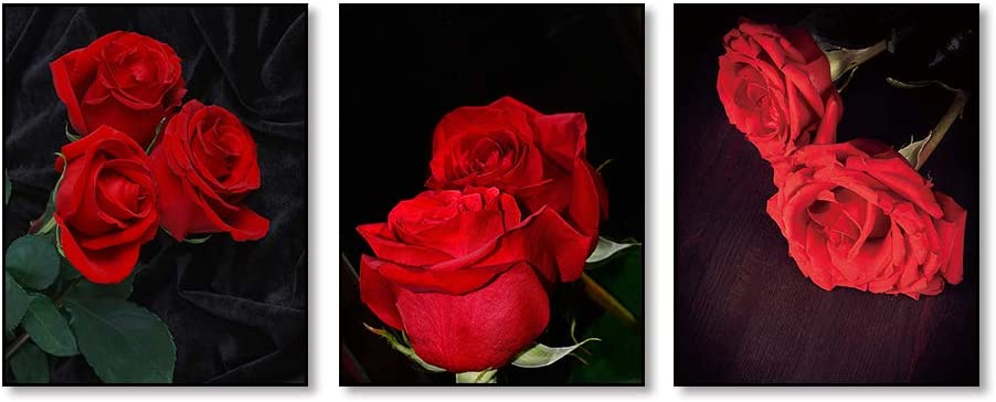 """Vintage Black Art Painting Red Rose Wall Art Paintings Set of 3 (8""""X10"""" Canvas Picture) Modern Abstract Wall Art Decor Flower Art Paint for Bedroom Living Room Home Decor Valentines Gift No Frame"""