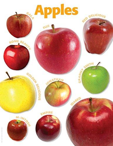 Scholastic TF2447 Apples Photo Chart
