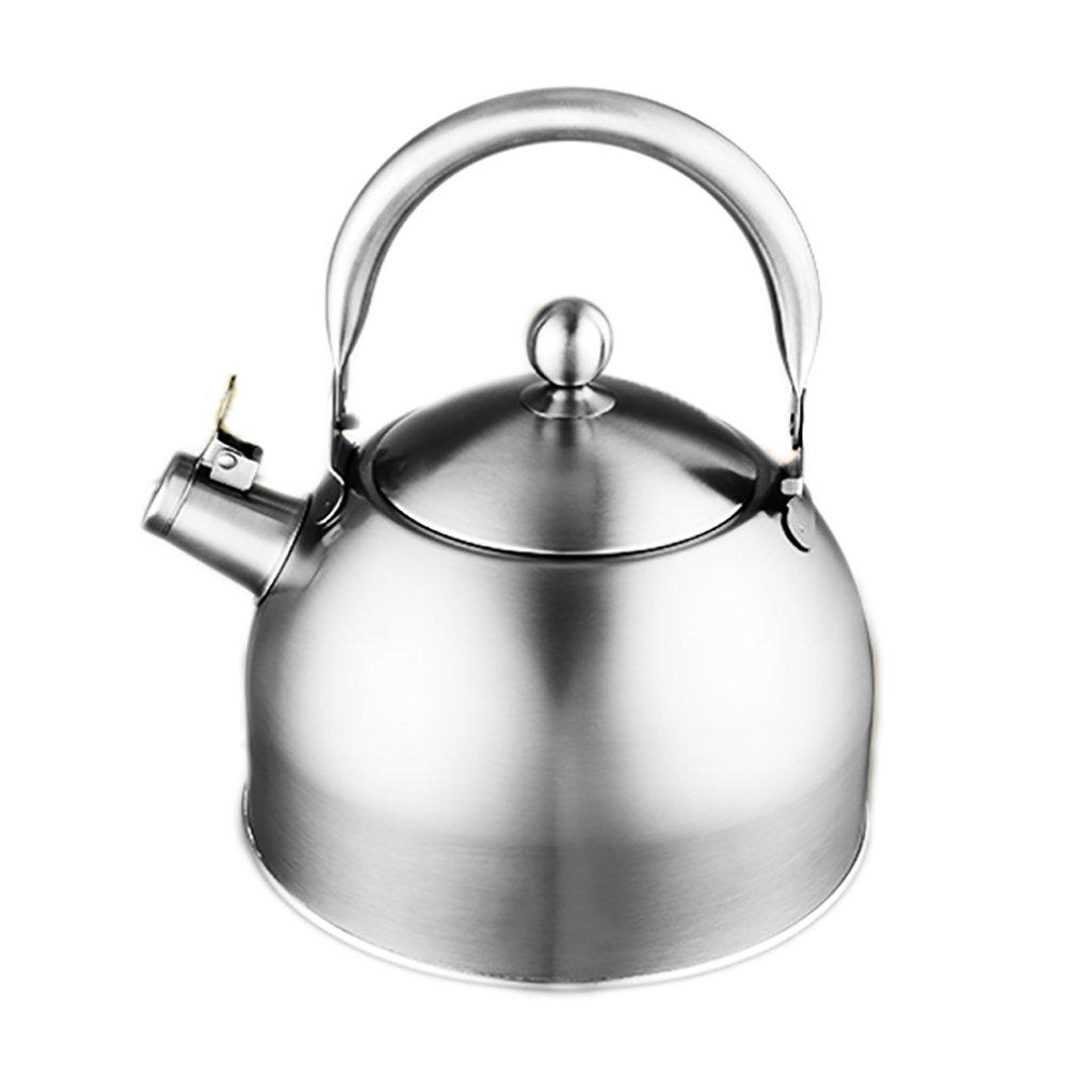 NUBAOGY Calentador De Gas De Acero Inoxidable 304 Calienta 4L5L Calienta Tetera De Cocina Casera Que Espesa El Gas (Color : 4l): Amazon.es: Hogar