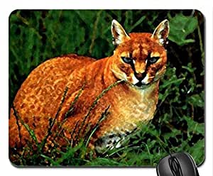 Asian golden cat Mouse Pad, Mousepad (Cats Mouse Pad, 10.2 x 8.3 x 0.12 inches)