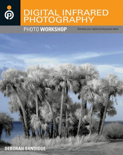 """Let your motto become """"What would happen if. . . ?"""" Infrared light offers photographers another artistic avenue to explore. You don't need years of experience or expensive equipment. Just grab an IR filter or a converted digital camera, and you're re..."""