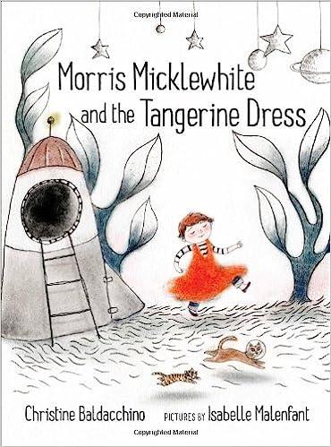 morris micklewhite and the tangerine dress christine baldacchino