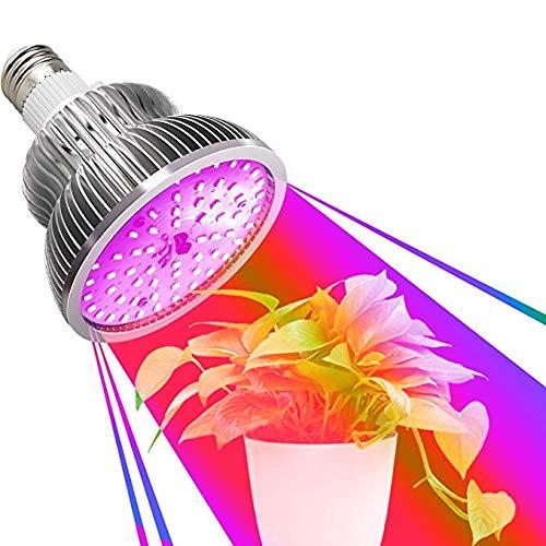 Innen Gartenarbeit Pflanzenlampe E26//27 50W LED Pflanzenlicht Vollspektrum Grow Lampe mit Timer LED-Lampe f/ür Gr/ünpflanzen Blumen und Gem/üse Gew/ächshaus