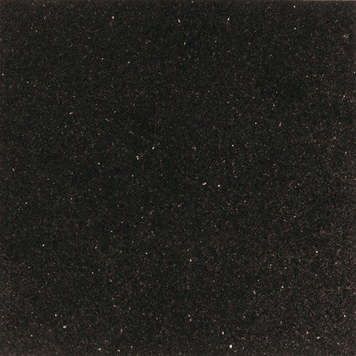 Daltile 12 in. x 12 in. Galaxy Black Natural Stone Floor and Wall Tile ()