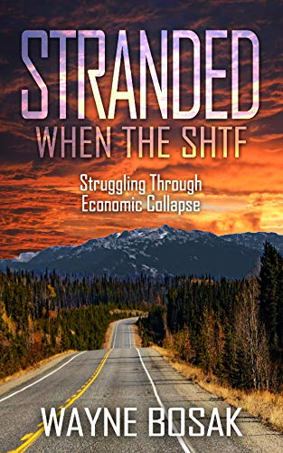 Stranded When The SHTF: Struggling Through Economic Collapse by [Bosak, Wayne]