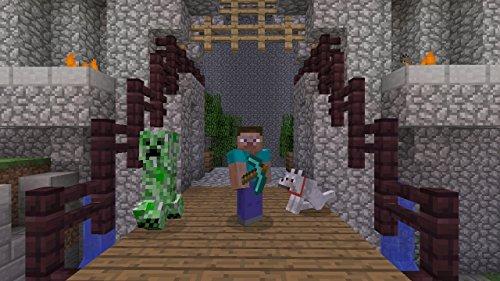 Minecraft: PlayStation Vita Edition [Japan Import