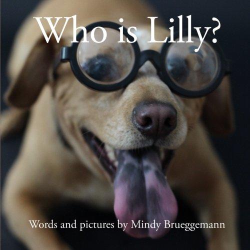 Who is Lilly?: Mindy Brueggemann: 9780985567613: Amazon com