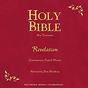 Holy Bible, Volume 30 Audiobook