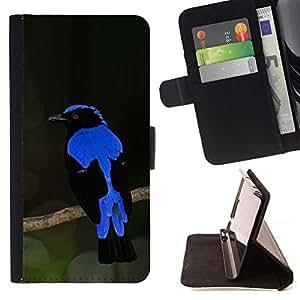 Momo Phone Case / Flip Funda de Cuero Case Cover - Plumes d'Ornithologie - Samsung Galaxy E5 E500