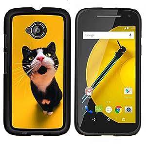 EJOOY---Cubierta de la caja de protección para la piel dura ** Motorola Moto E2 E2nd Gen ** --El gato curioso