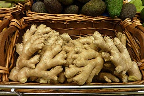 Organic fresh ginger from Pure (2) by Nine Shani (Image #4)