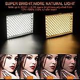 FOSITAN LED Video Studio Light Kit, Bi-Color 336