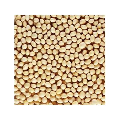 HeirloomSupplySuccess 30 Heirloom White Soybean Seeds : Vegetable Plants : Garden & Outdoor