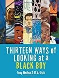img - for Thirteen Ways of Looking at a Black Boy book / textbook / text book