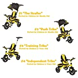 KidsEmbrace 4-in-1 Push and Ride Combination