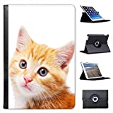 Close Up of Gold Cute Blue Eye Cat For Apple iPad