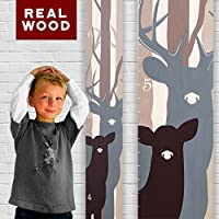 Nature Themed Wooden Growth Charts   Wood Height Chart for Boys & Girls   Growth Chart Art