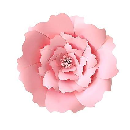 Amazon Foonee Paper Flower Template Kit 3d Paper Flowers