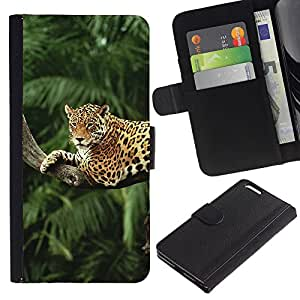 KingStore / Leather Etui en cuir / Apple Iphone 6 PLUS 5.5 / Leopard ?rbol Selva Selva árboles del gato grande