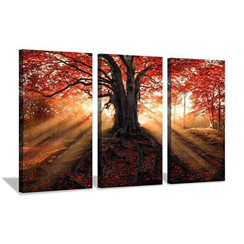 Red Maple Tree Canvas Art: Landscape Autumn Sunset Forest Artwork Prints on Canvas Wall Art for Living Room Office (26'' x 16'' x 3 Panels)