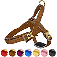 DOGNESS Classic Dog Halter Harness, with Traffic Control Handle Belly Protector Patented Metal Buckle, Reflective Soft Padded Nylon, for Small Medium Large Dogs (S/M, Brown)