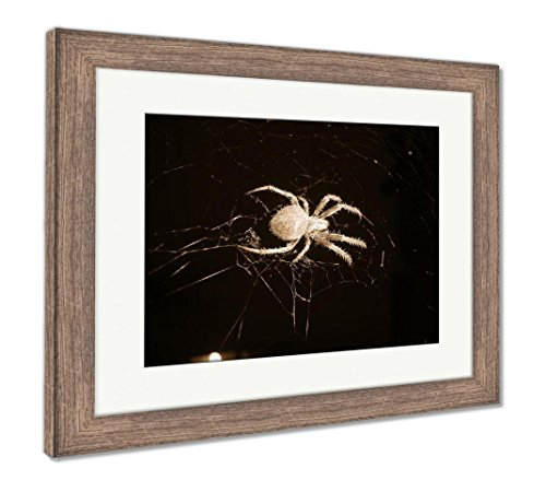(Ashley Framed Prints Charlotte and Her Web Close, Wall Art Home Decoration, Sepia, 34x40 (Frame Size), Rustic Barn Wood Frame, AG6351397)